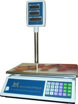 Весы торговые со стойкой ВР 4900-30-10СДБ-01М - фото 13058