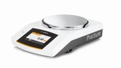 Лабораторные весы Practum 5100-10RU - фото 14633