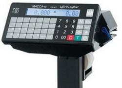 Терминал весовой печатающий P/ТВ - фото 9187