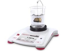 Портативные весы STX421