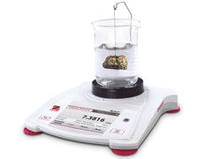 Портативные весы STX621