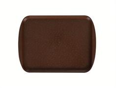 Поднос столовый 415х305 мм с ручками светло-коричневый