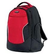 Рюкзак для ноутбука Samsonite U17-00019 (U17*019*00)