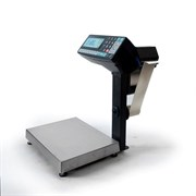 Торговые весы-регистраторы МК-32.2-R2P10-1 с печатью этикеток, с подмоткой