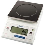 Лабораторные весы DL-6101