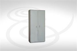 Шкаф для хранения наркотических веществ ШНВ.05.00
